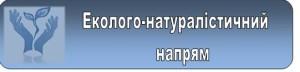 Безымянный13_cr547